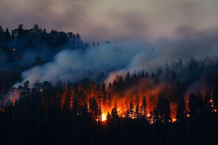 Çində meşə yanğını nəticəsində azı 19 nəfər ölüb